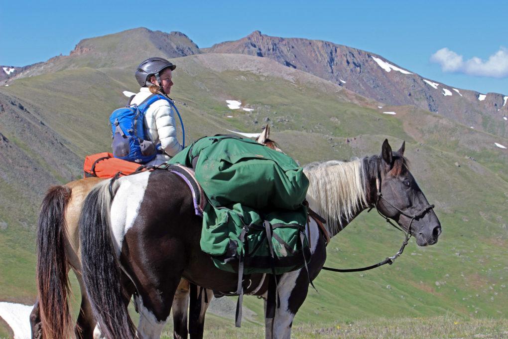 horseback on the colorado trail riding horses