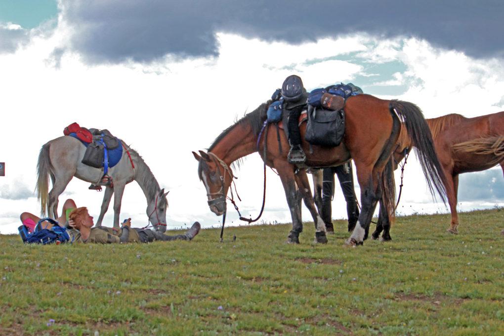 ridin horses on the Colorado trail