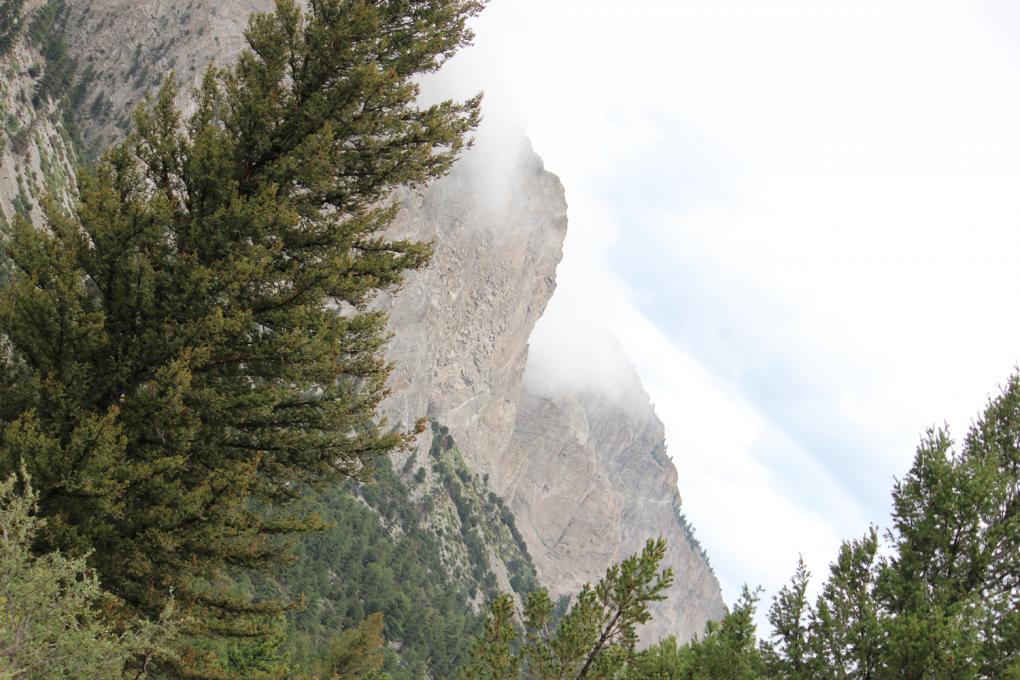 Colorado Trail Segment 14 Chalk Creek Trailhead